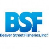 Beaver Street Fisheries